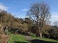 Coleton Fishacre garden - geograph.org.uk - 1189849.jpg