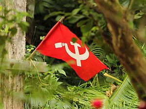 Communism in Kerala - A communist flag in Kanjirappally, Kerala.