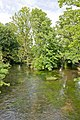 Confluence on River Itchen, College Walk, Winchester - geograph.org.uk - 879582.jpg
