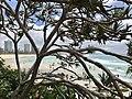 Coolangatta Beach, Queensland 12.jpg