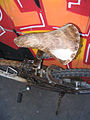 Cow skin bicycle 4.jpg