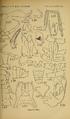 Craspedosomatidae of North America 1895 Plate VII.png