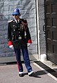 Crazy uniform (5625078078).jpg
