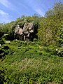 Creswell Gorge, Creswell Craggs, Notts (53).jpg