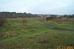 Croxley Common Moor - geograph.org.uk - 84439.jpg