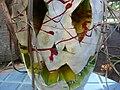 Cucurbita maxima Zapallo Plomo semillería Florensa - (PV02) 2015-01-29 zapallo día 19 exorcismo 05.jpg