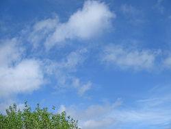 Cumulus fractus.JPG