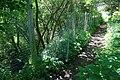 Cut Fence by Bridlepath - geograph.org.uk - 842529.jpg