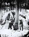 Cutting trees on the Upper Ottawa River 1871.jpg