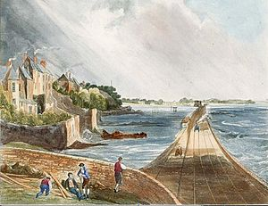Blackrock, Dublin - View from Blackrock railway station (1834). The Williamstown Martello tower is depicted in the distance, to the left of the train track, surrounded by water at high tide.