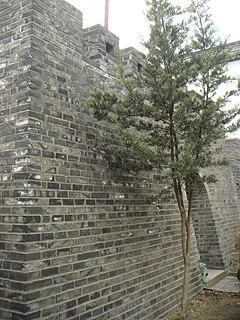 History of the city of Shanghai, China