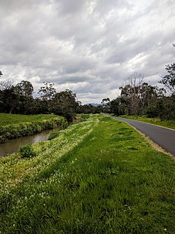 Dandenong Creek Trail in Heathmont.jpg