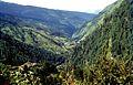 Datmir, Uttarakhand 249128, India - panoramio (1).jpg