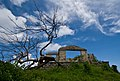 Dead Building, Dead Tree - panoramio.jpg