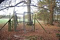 Deer fence, Hoad Wood - geograph.org.uk - 1575123.jpg