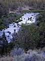 Deschutes River (30134562).jpg