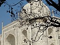 Detail of Taj Mahal - Agra - Uttar Pradesh - India - 05 (12650237325).jpg