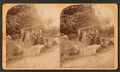 Devil's Den, Gettysburg, Pa., June 25, 1892. (Group posing at Devil's Den.), from Robert N. Dennis collection of stereoscopic views.png