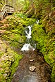 Dickson Falls, Fundy National Park (7617861880).jpg