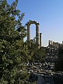 Didyma Antik Kenti 48.jpg