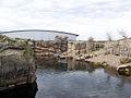 Dierenpark Emmen - penguin stay.jpg