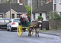 Donkey cart in Conlig - geograph.org.uk - 1606831.jpg