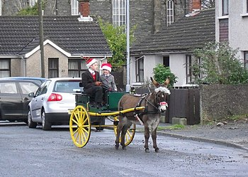 English: Donkey cart in Conlig A change from a...