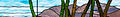 Douglas Arizona Banner.jpg