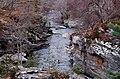 Downstream from Tromie Bridge - geograph.org.uk - 1776980.jpg