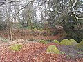 Dragon's Teeth, Waverley Abbey 04.jpg