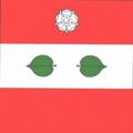Drapelul comunei Larga, Briceni.png