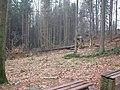 Dscn3651 - panoramio.jpg