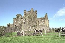 Dunbrody Abbey SE 1997 08 27.jpg