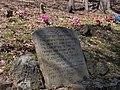 Dunham-cemetery-edgar-evins-tn1.jpg