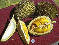 Whole and opened durians.