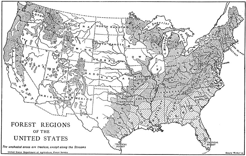 EB1911 Forests and Forestry - forest regions of the U.S.jpg