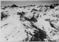 ETH-BIB-Flumserberg, Blick nach Südwesten, Magerrain-LBS H1-012800.tif