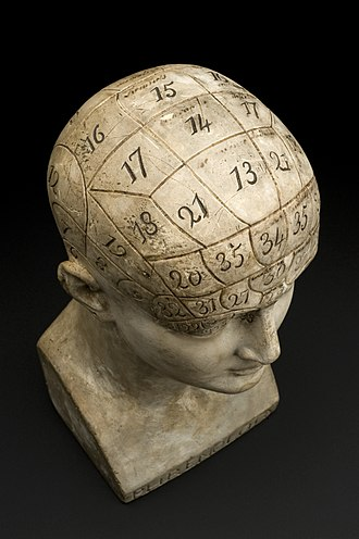 Phrenology - Phrenological bust