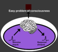 Easy problem of consciousness (en).png