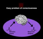 Easy problem of consciousness (en).png