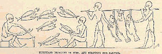 History of fishing - Egyptians bringing in fish, and splitting for salting.