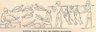 Egyptian fishery3