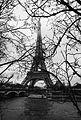 Eiffel Tower in Mist (31578369214).jpg
