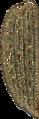 Elytron carabus cancellatus Jacobson.png