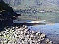 En la Isla del lago Moquehue. - panoramio.jpg