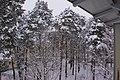 Erster starker Schneefall - panoramio.jpg
