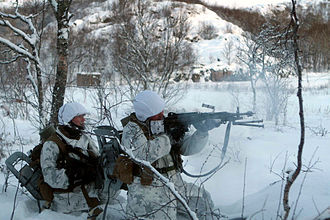25th Marine Regiment (United States) - Marines with 2nd Battalion, 25th Regiment open fire upon a mock enemy force during a training raid while at Exercise Cold Response 2010 in Norway.