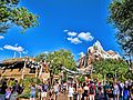 Expedition Everest (17236368091).jpg