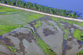 FEMA - 36509 - Aerial of Mississippi River in Missouri.jpg