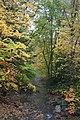 Fall Foliage in Laurel Mountains - panoramio (9).jpg